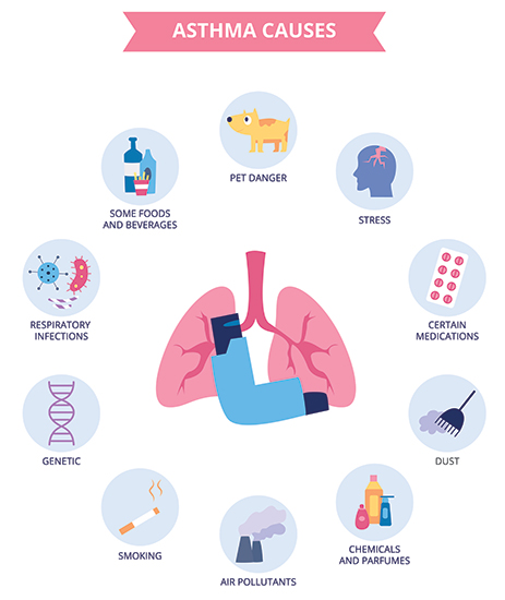 Major Asthma Causes You Must Know